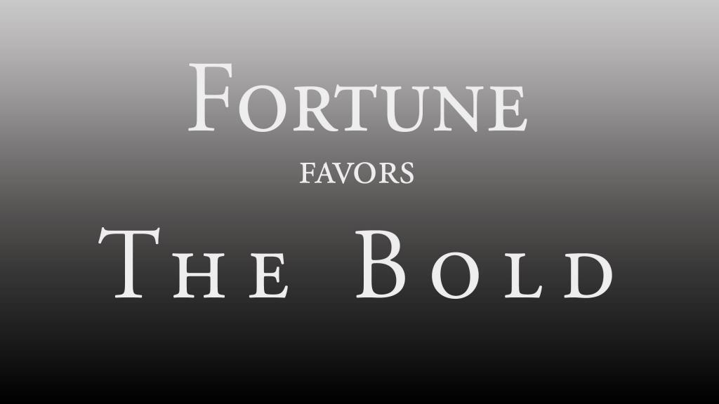 Fortune Favors The Bold – Stan Laws